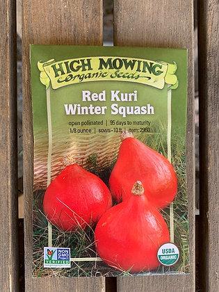 Winter Squash Red Kuri