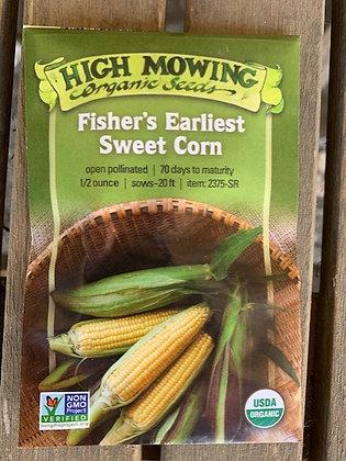 Corn Fisher's Earliest