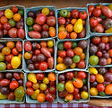 tomato mix.jpg