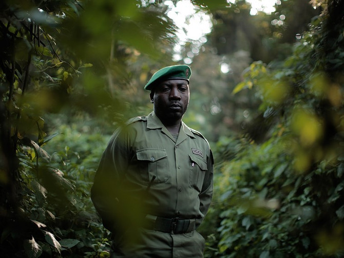 """Battle for Virunga"" receives Genesis Award from The Humane Society"