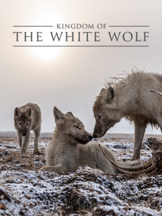 """Kingdom of the White Wolf"" Now Available on Disney+"