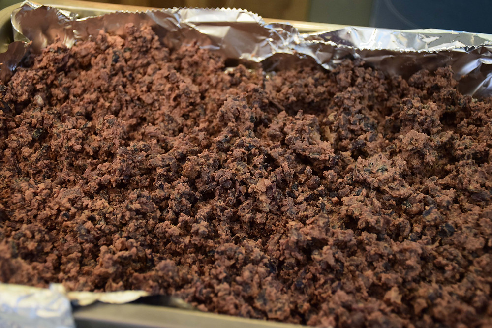 Crumbly cacao nibs after the drying phase | Linden Chocolate Lab
