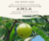 Amla - The Ultimate Superfood For Your Hair, Skin & Health