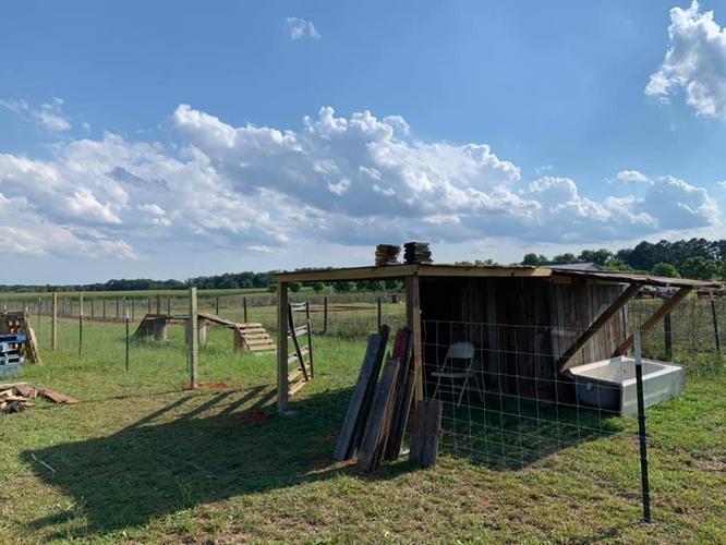farm 33.png