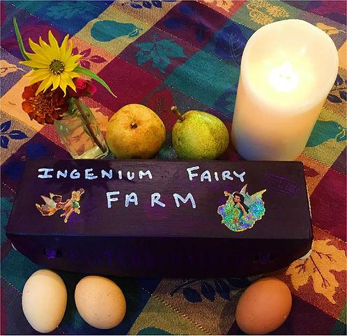 Ingenium Fairy Farm Egg Picture.jpg