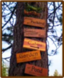 May 2020 Tree Sign Image Framed.jpg