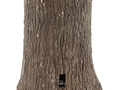 Nature Blinds Big Oak Feeder