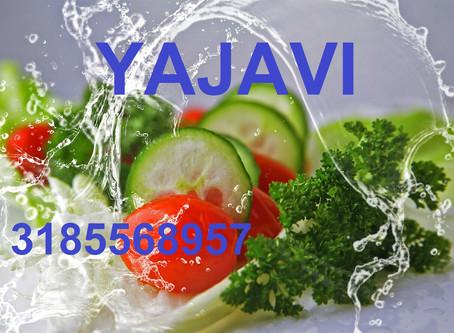 ORGANICO CULTIVOS Agricultura Sostenible y Sustentable. Wasap 3185568957
