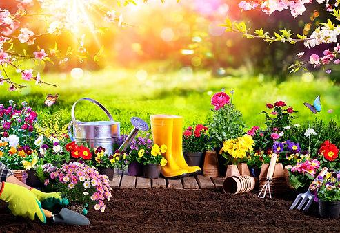 Spring Gardening - Flowerpots An Equipme