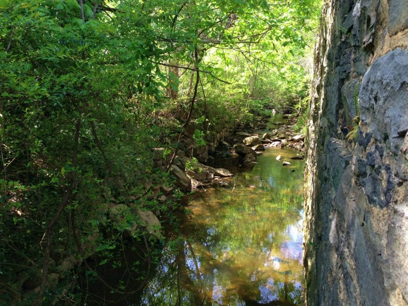 Creek-MoreheadPark