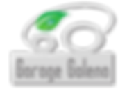 LogoGarageGolena.png