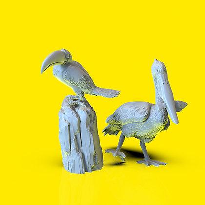 Weird Beaks Set
