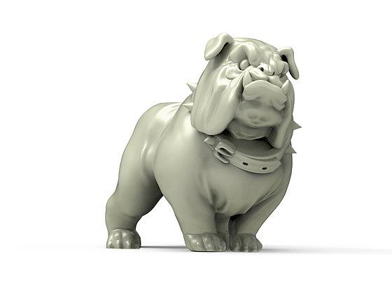 The Angry Bulldog