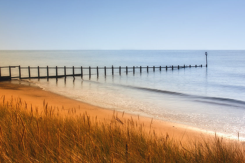 green-grass-near-shoreline-beside-sea-un