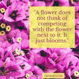 a_flower_instagram1080.png