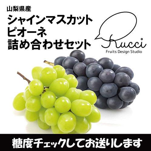【シャインマスカット+ピオーネ】(各1房 合計1kg)