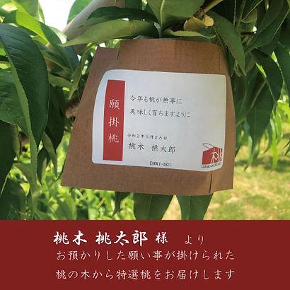 INNER_CARD_EMA_凡例.jpg