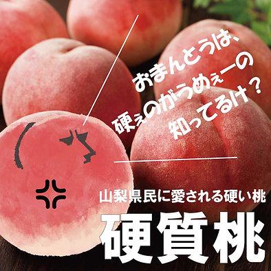 【硬質桃】皮ごと食べられる硬い桃【350g3玉セット】