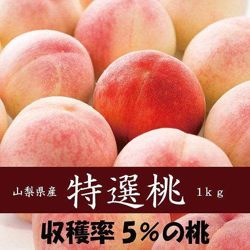 5%の桃【特選桃】朝採れ(特選大玉桃3玉 1kg以上)
