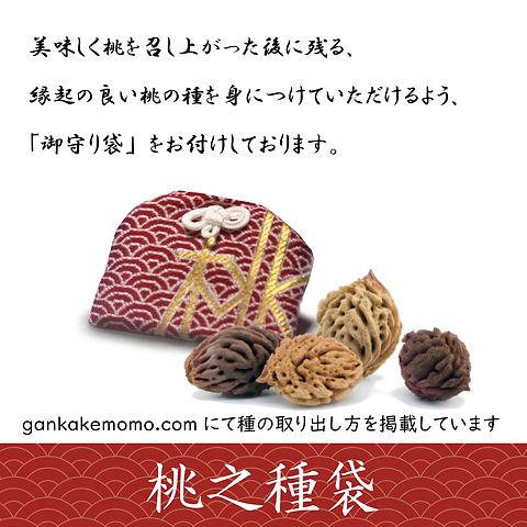 Gankake_03.jpg