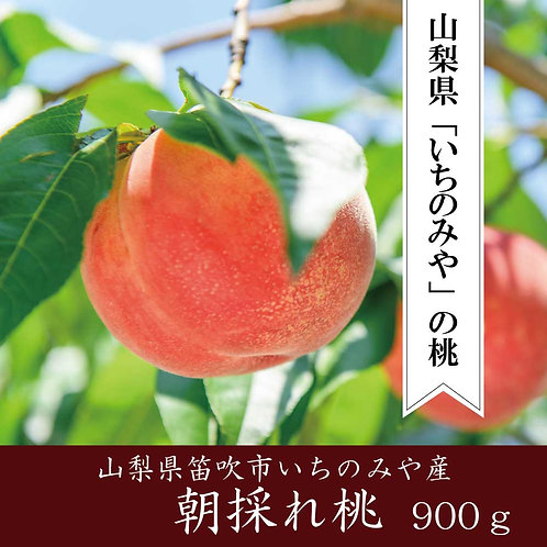 山梨県産【朝採れ桃】(標準グレード桃3玉 900g以上)