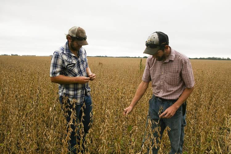 Uma nova crise na agricultura dos EUA se aproxima