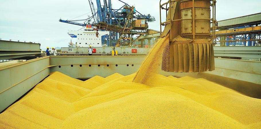 Brasil fecha acordo para nova rota de exportação de soja. Ivan Bueno/APPA