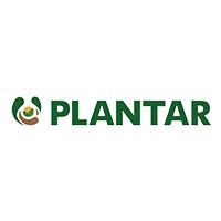 PLANTAR.png