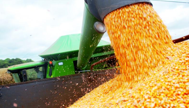 Governo disponibiliza R$ 384 milhões em subvenção para contratar seguro rural