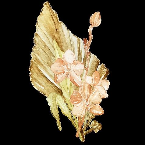 IanMikraz-Watercolor-Dried-Palm-Illustra
