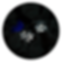 MFW-web-04.png