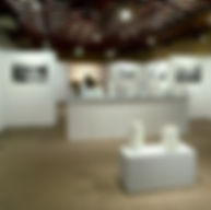 expo-Luisier-Häuptli-carrée.jpg