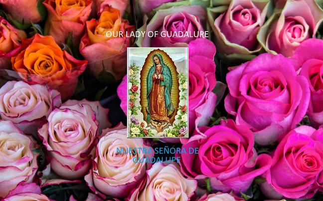 Our Lady of Guadalupe at Holy Family/ Nuestra Señora de Guadalupe en la Sagrada Familia