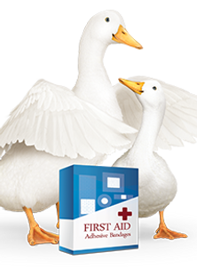 2015-05-04-first-aid-bandage-duck-300x30