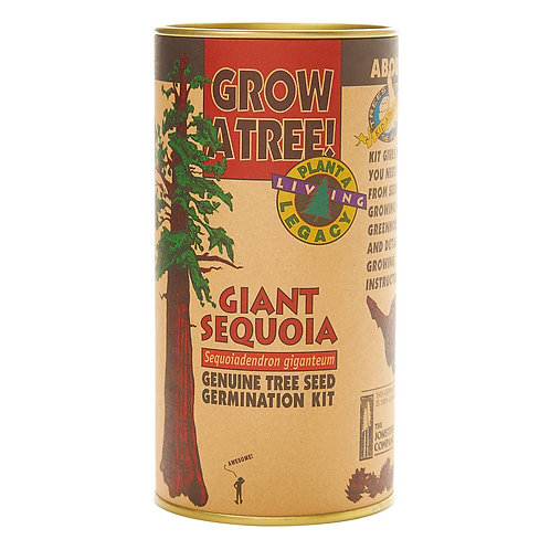 Tree Seed Grow Kit
