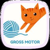 Gross-Motor.png