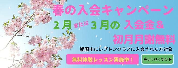 春の入会キャンペーン.jpg