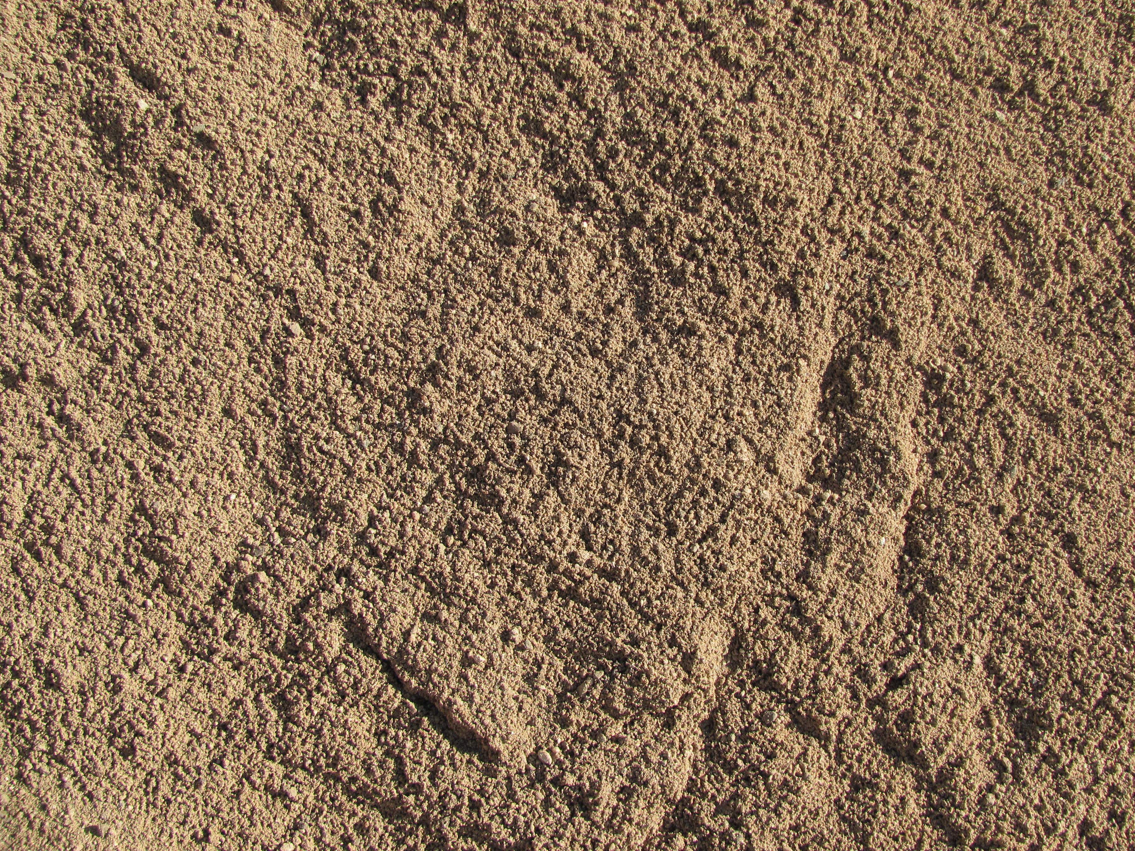 Freshwater Coarse Sand