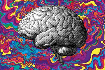 Johns Hopkins launches center for psychedelic research