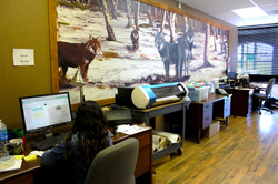 Gray Wolf Promo Shared Office Space