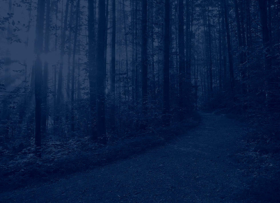 Woods_Path_blue.jpg