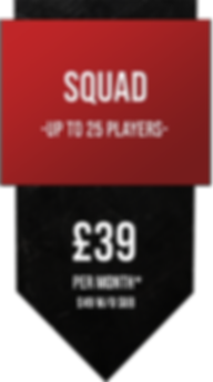 squadpricing.png