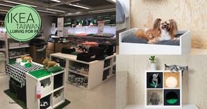 到台北也跑了一個逛IKEA的行程! 更便宜價錢買到寵物手信!