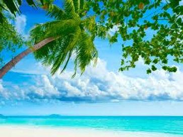 tropical beaches 1.jpg