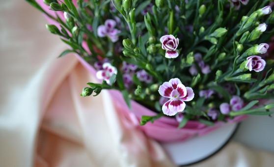 kukkakuva.jpg