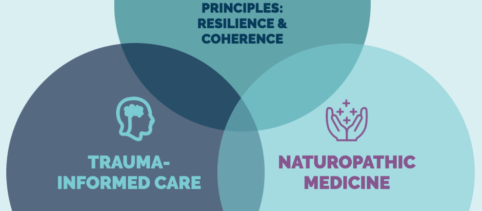 Trauma-Informed Care, Naturopathic Medicine, and Salutogenesis
