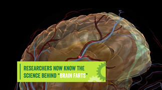 The Science of Brain Farts
