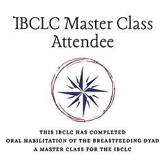 IBCLC Master Class logo.jpg