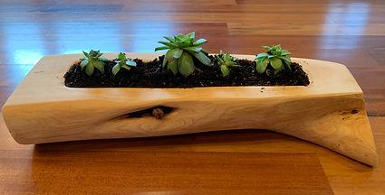 Planter One (side B).jpg