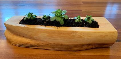Planter One (side A).jpg